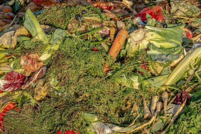 Lebensmittelabfälle – der erste Schritt zur Reduzierung